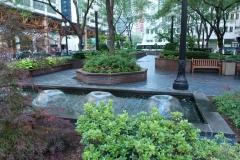commerical-landscape-maintenance-3