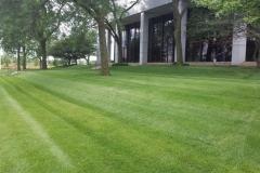 commerical-landscape-maintenance-5