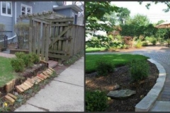 backyard-before-after